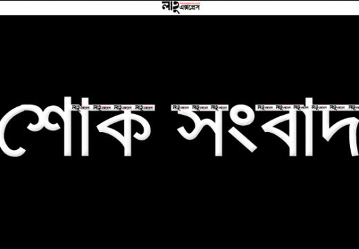 জাতীয় দলের সাবেক ক্রিকেটার হাসিবুল হোসেন শান্তর মাতা, সাংবাদিক লিটন শরীফের চাচীর ইন্তেকাল