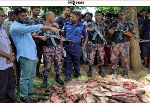 কুলাউড়ায় সরকারি পুকুরের মাছ চুরি, বিজিবির ধাওয়া খেয়ে পালাল চোর