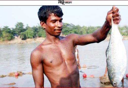সুরমা নদীতে রুপালি ইলিশ খবর: বাংলানিউজ