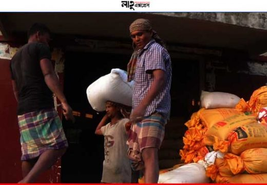 মৌলভীবাজারে আমন ক্রয়ে ব্যাপক অনিয়ম, বঞ্চিত প্রকৃত কৃষকরা