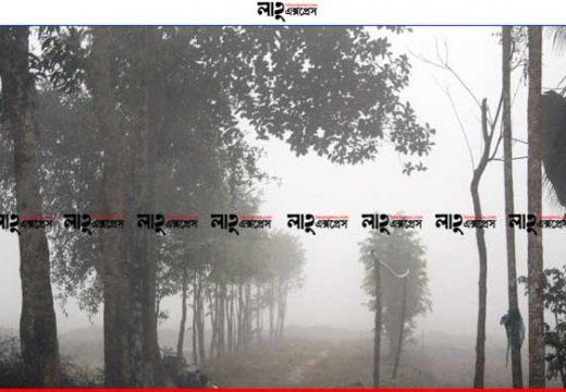 শ্রীমঙ্গলে দেশের সর্বনিম্ন তাপমাত্রা