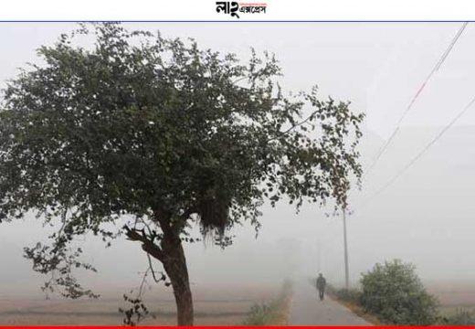 শ্রীমঙ্গলে অসময়ে 'শীতের কুয়াশা'