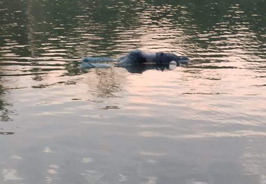 গোলাপগঞ্জে কুশিয়ারা নদীতে ভাসছে অজ্ঞাত ব্যক্তির লাশ