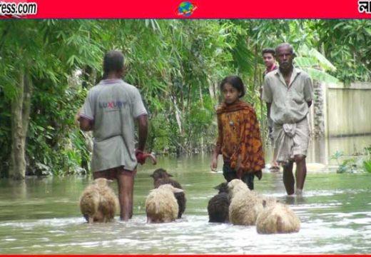 সুরমার পানি উপচে প্লাবিত লোকালয়, দুর্ভোগে বানভাসিরা