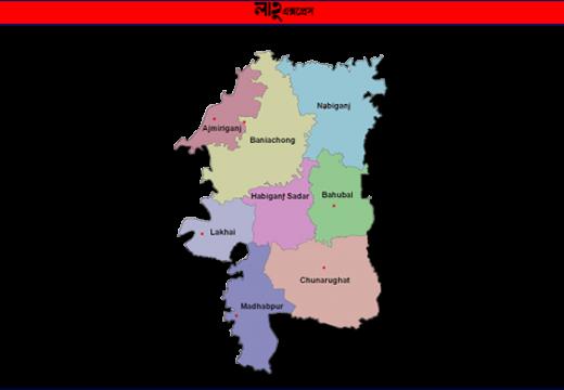হবিগঞ্জে পাসের হার ৭১.৫৩ শতাংশ