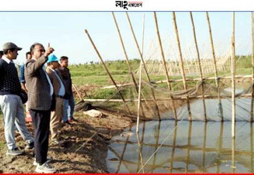 সুনামগঞ্জে উৎকণ্ঠায় হাওরের কৃষকরা নিউজ ডেস্ক
